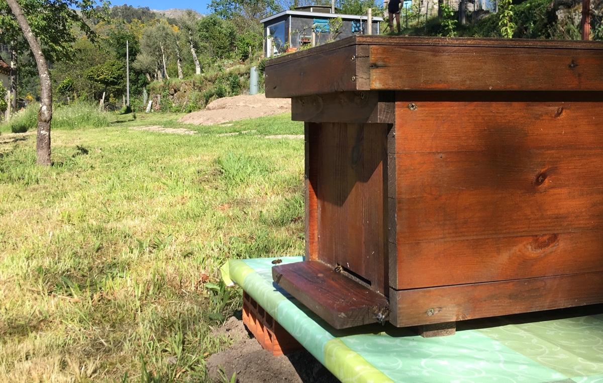 Bijenhouden in Portugal