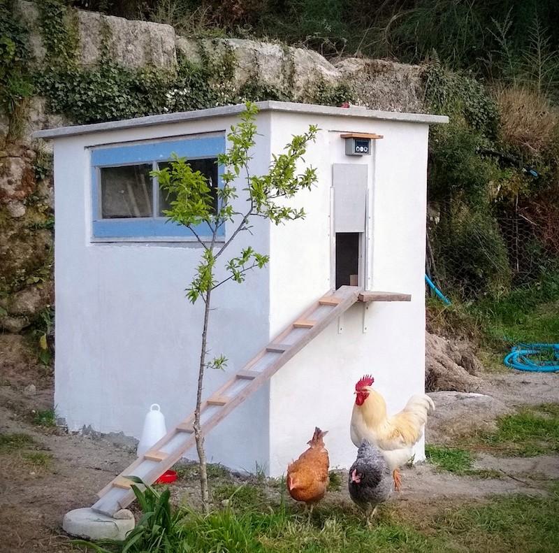 een kippenstukje